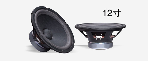 party-house-ap12-woofer-600